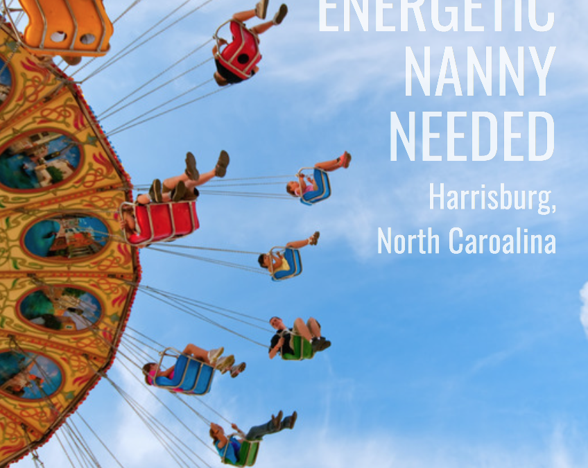 Energetic Nanny Needed