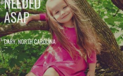 Full Time Nanny Needed: Cary, North Carolina