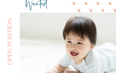 Calming Nanny Wanted – Huntersville, NC – Filled